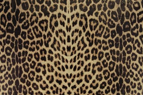 Panther/ natural - Panther Lycra