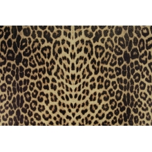 Panther/ natural - Panther Lycra double printed