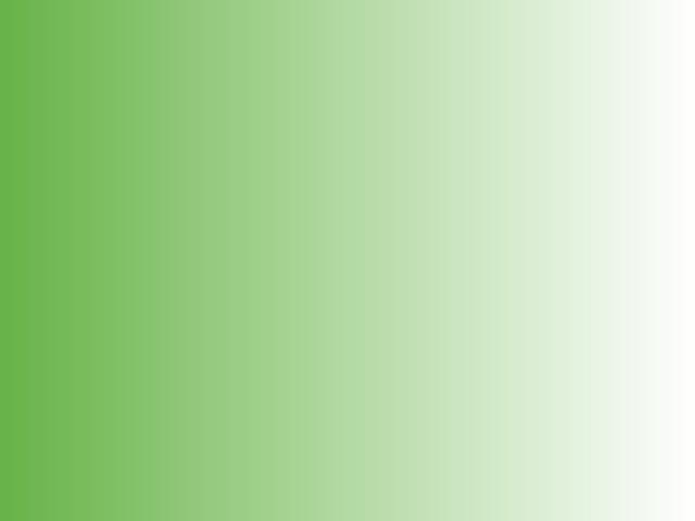 SATYNA CIENIOWANA CHRISANNE - green-white