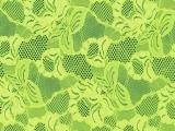 KORONKI ELASTYCZNE CHRISANNE - FLORAL CASCADE kolor:pistachio