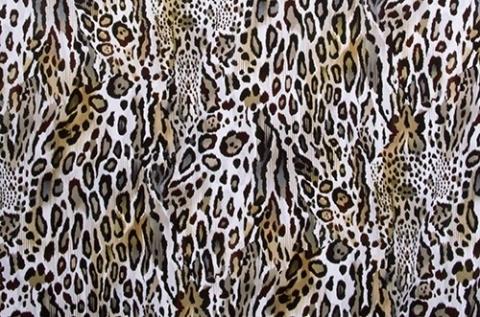 Textured Leopard