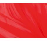 żorżeta DSI <span class='shop_red small'>(jade )</span>