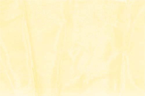 szyfon DSI - scarlet DSI