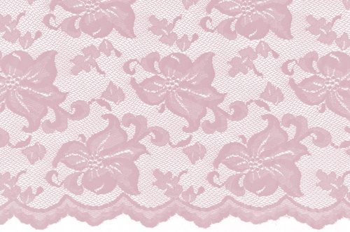 Lily - carnation