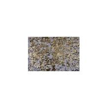 Chameleon Sequins Mesh - gold-silver