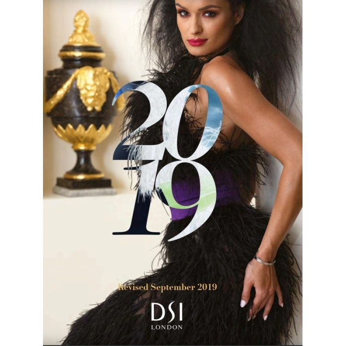Katalog DSI książka