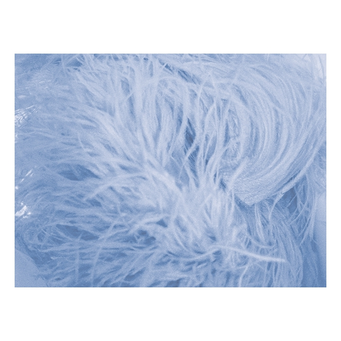 feather boa CHR-C/BLUEBELL