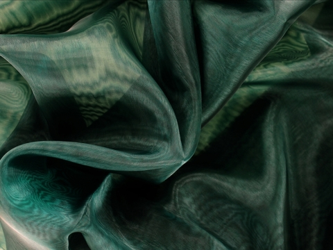 organza CHR-C/FOREST GREEN