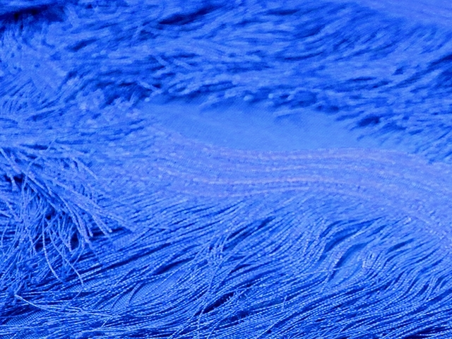 Scalloped All Over Fringe on Net - blue