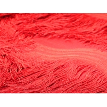 Scalloped All Over Fringe on Net - red