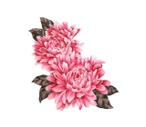 Chrissy Flower Motyw <span class='shop_red small'>(multi on sugarpink)</span>