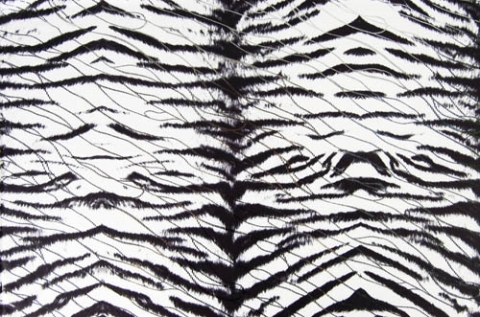Tiger Lycra / white black